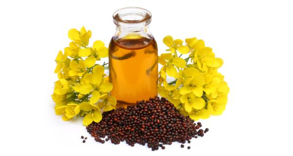 sanda oil ingredients
